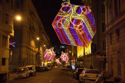 Nice-Carnival-2014-Parade-of-lights-February-2014-Corso-Carnavalesque Illumine-Carnaval-Roi-de-la-Gastronomie-13