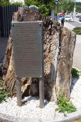 Gustav Klimt Centre Attersee 09
