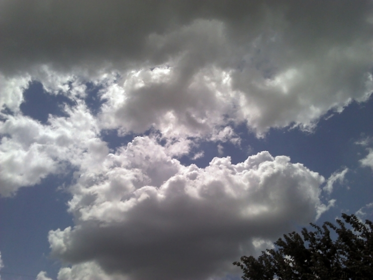 2011-06-26_12-36-40_710