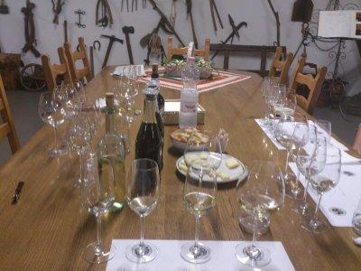 la-tenuta-santome-italy-wine-degustare-22