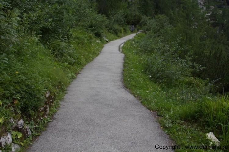 Schönbergalm - Nature Park - Oberösterreich 20
