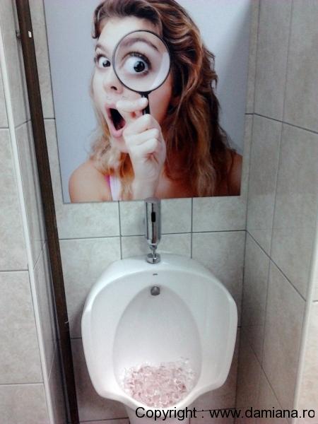 wc-taverna-sarbului-sinaia_4