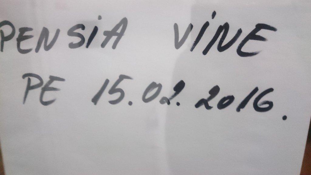 pensia-vine-pe-15-damiana-2