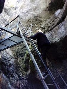 canionul-sapte-scari-damiana- (12)