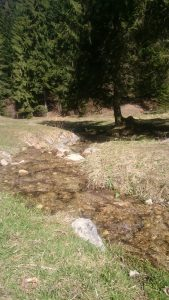 canionul-sapte-scari-damiana- (3)