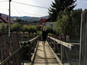 rucar-cabana-valea-haiducilor-4