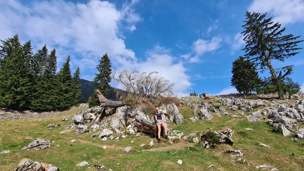 Traseu pe munte pentru incepatori